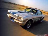 _Mustang shelby_GT350SR_01..jpg