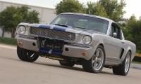 mustang Shelby-GT350SR.jpg