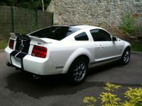 Shelby GT500 004.JPG