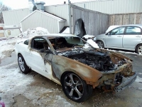 2010_MustangWreck_Ouch2a.jpg