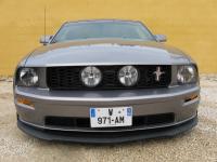 Mustang 1.jpg.jpg