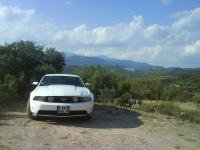 Mustang Guara 2.JPG