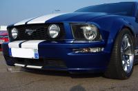 Mustang_1a.JPG