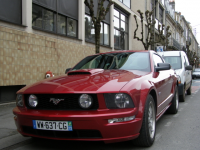 stang85 (FILEminimizer).jpg