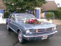 18062011(003).jpg