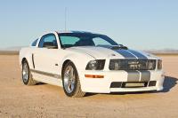 2007 Shelby GT (2).jpg