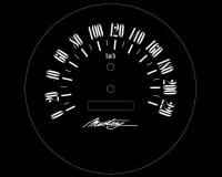Speedo Mustang kmh V3 N.jpg