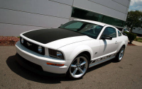 racecraft.saleen.mustang.2.500.jpg