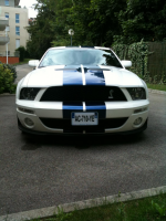Shelby GT500 001.JPG