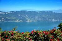 Le Lac du Bourget.jpg