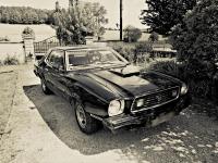 MustangEvolution01.jpg