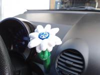 fleur new beetle.jpg