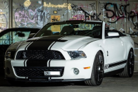 big_ford(usa)_mustang__13e5648.jpg