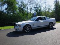 Mustang day 2012 037.jpg