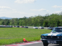 Mustang day 2012 046.jpg