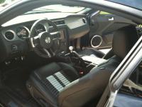 Shelby GT500 2010 049.JPG