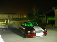 mustang de nuit 2.jpg