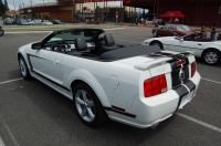 Mustang Blanche Arriere.JPG