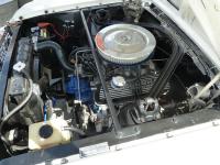 66 GT350 white 3P1080462 i.jpg