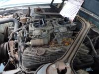 67 GT500 P1080307 i.jpg