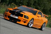 mutang_orange 2.jpg