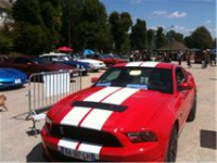 shelby red.png