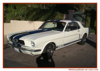 mustang-coupe-clone-shelby-3..