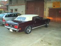 69 Cooper 2.jpg