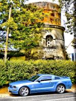 Blue Hornet.jpg