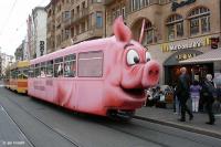 suisse 2.jpg