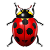 avatar_YVAN 85