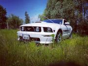 avatar_Crazyman60