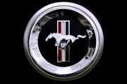 avatar_Jérémy Mustang