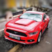 avatar_Tof55
