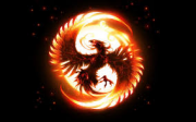 avatar_Phoenix40090