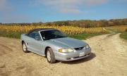 avatar_Mustang51300