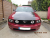avatar_loulou-mustang