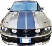 avatar_Mustang08