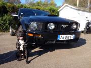 avatar_Mustang57