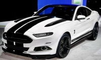 custom-2015-Ford-Mustang-black-white.jpg
