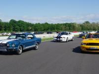 Mustang day 2012 035.jpg