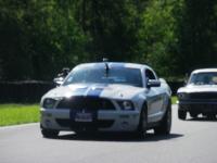 Mustang day 2012 039.jpg