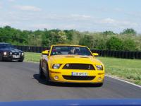 Mustang day 2012 041.jpg