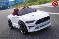 Ford_Mustang_GT_12_Volts_1_Place.jpg