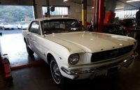 Ford-Mustang-Blanche-196517.jpg